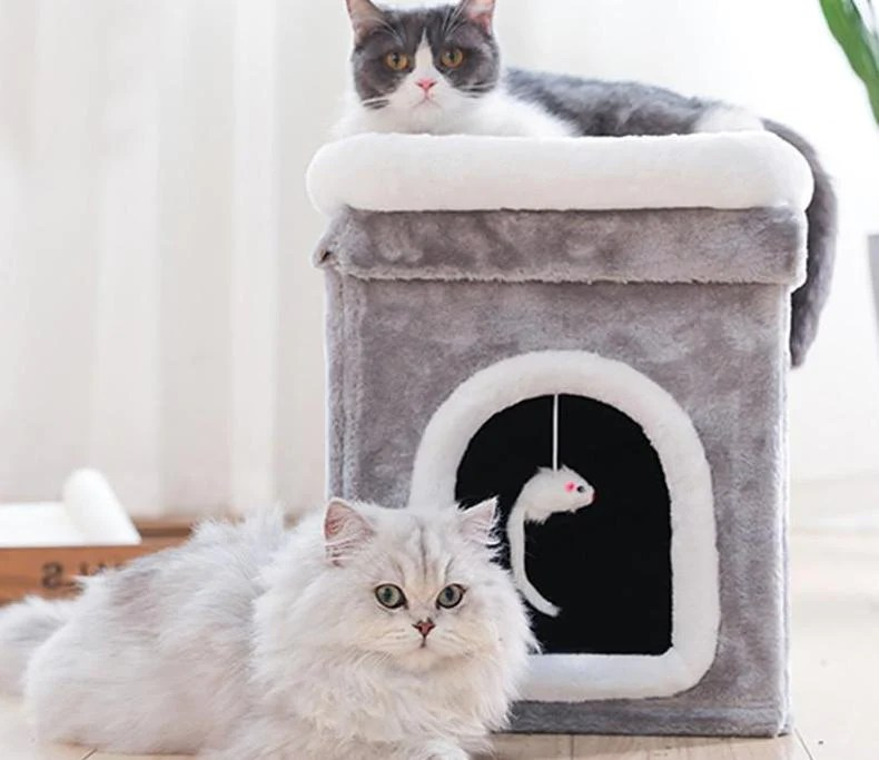 Cat Play House Pet Clever
