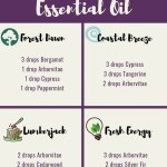Arborvitae Essential Oil Uses Benefits And Recipes Spotlight