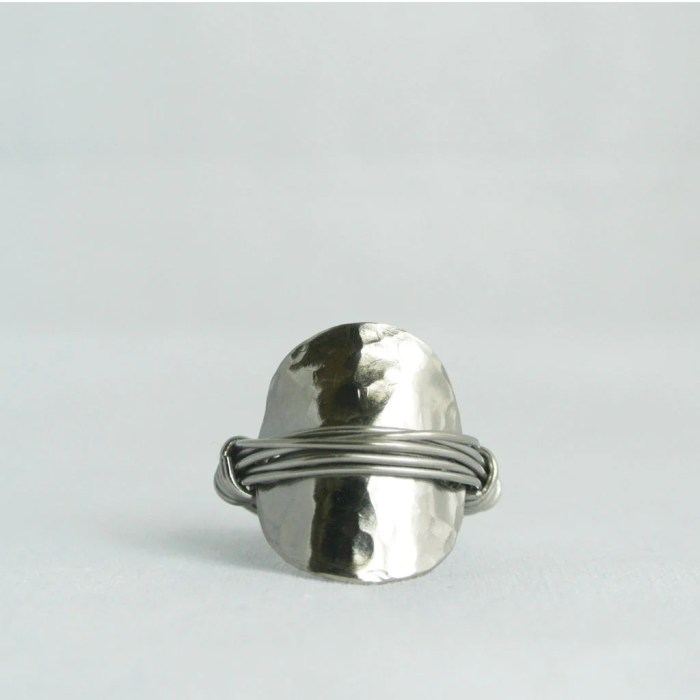 Zoe Titanium Ring - Gifted to stylist of ABC's show Scandal