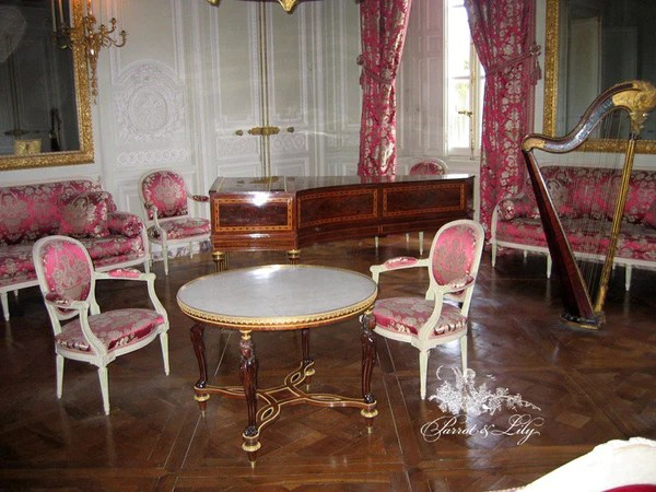 Chair Iconised By Louis XVI Dining Chair Parrot Amp Lily