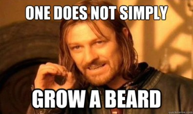 one does not simply grow a beard