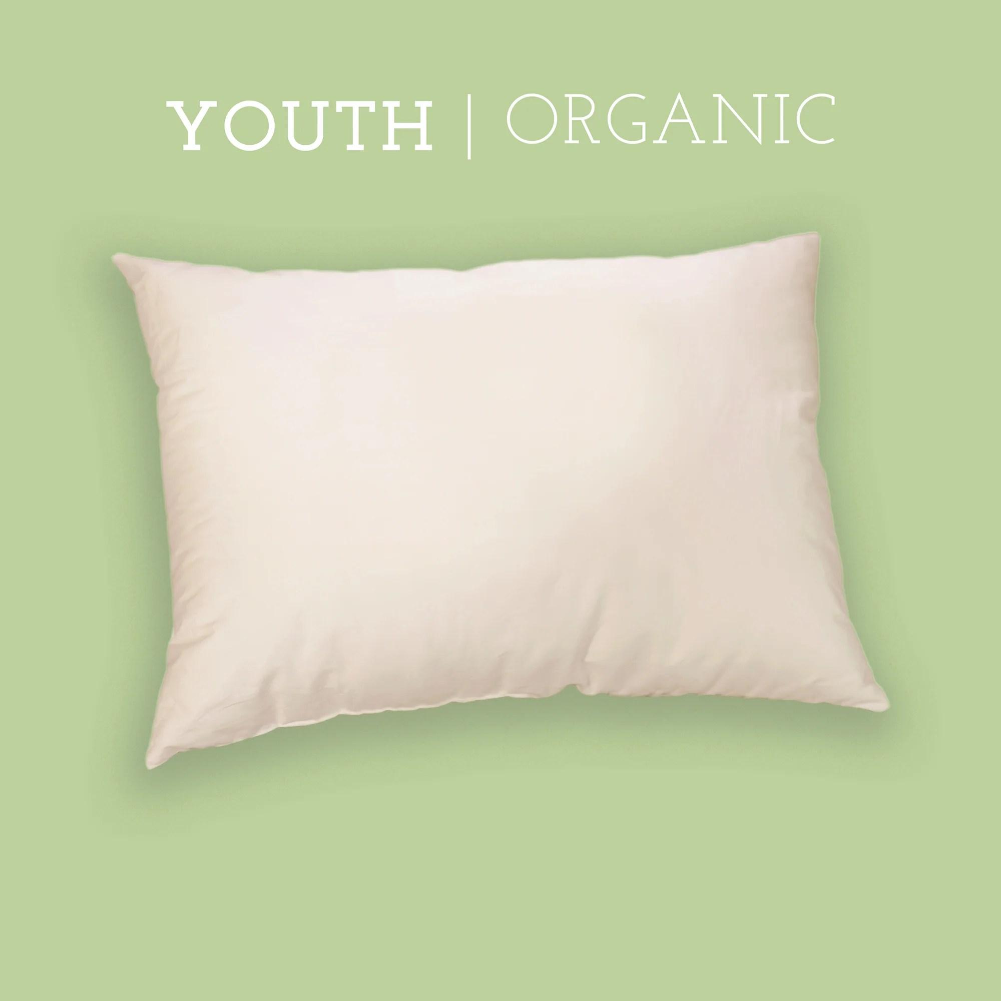 organic youth pillow 16 x 22