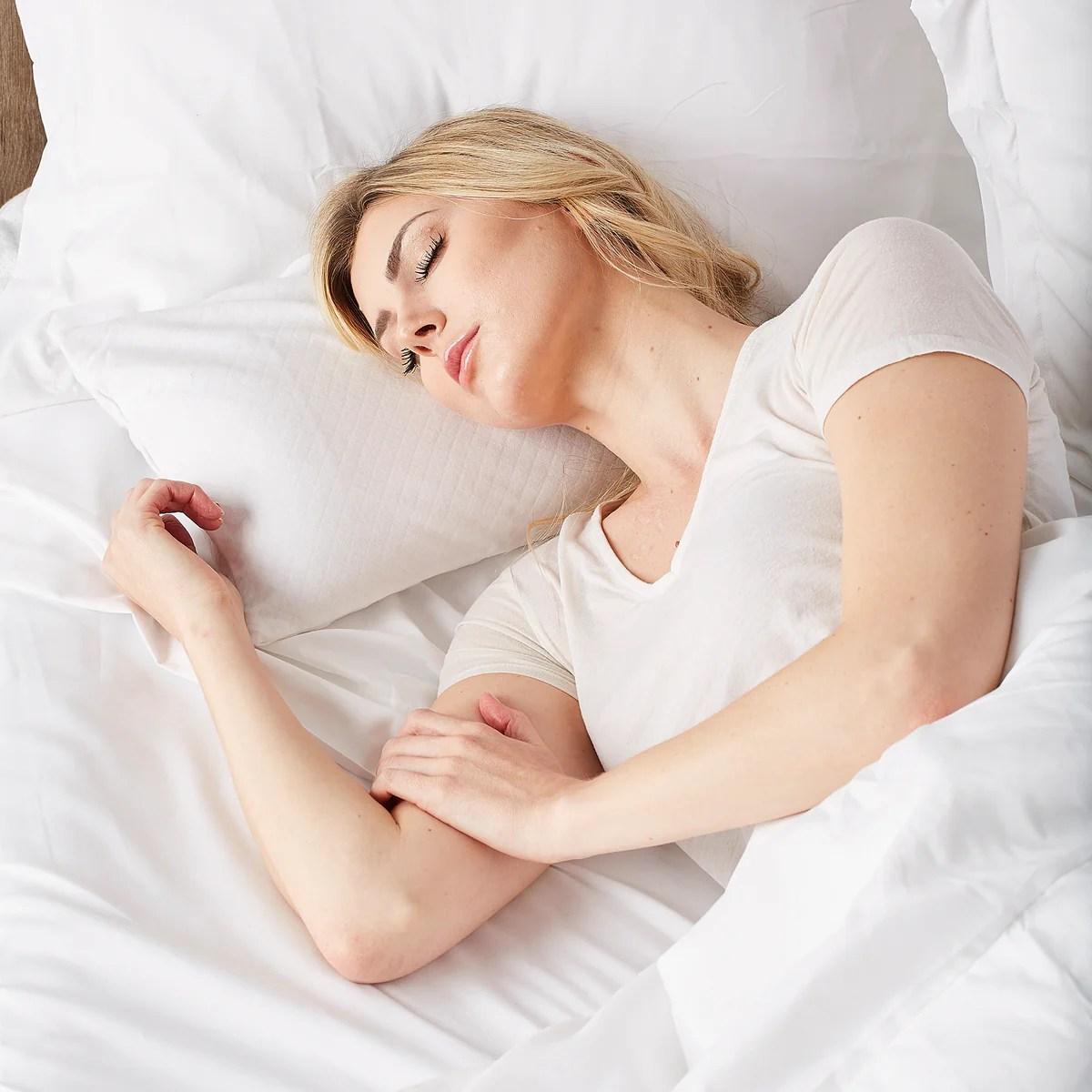 bucky travel duo buckwheat millet pillow bedding bed pillows