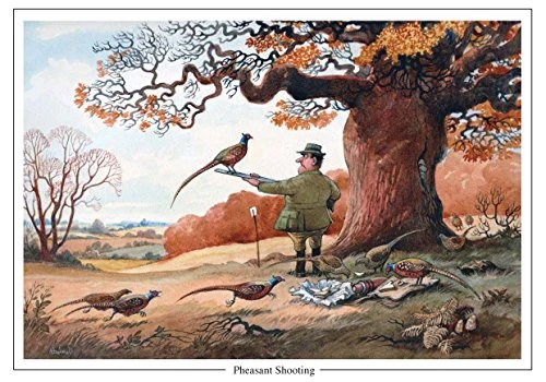 Pheasant Shooting By Norman Thelwell A5 Sporting