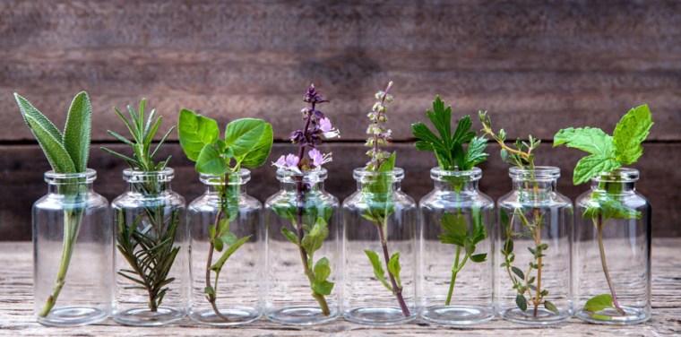 Afbeeldingsresultaat voor NATURAL medicine