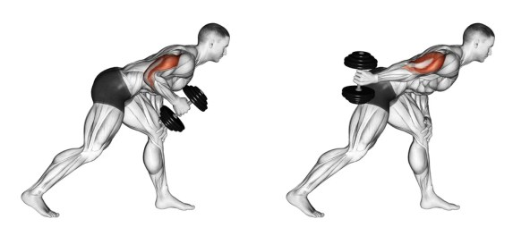 Image result for Kickbacks Triceps