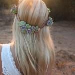 Succulent Crown Live Wedding Succulent Favors For Sale Bulk Succulents