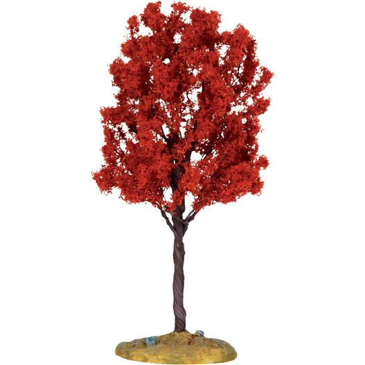 Miniature Bald Cypress Tree 6 Self Help Warehouse