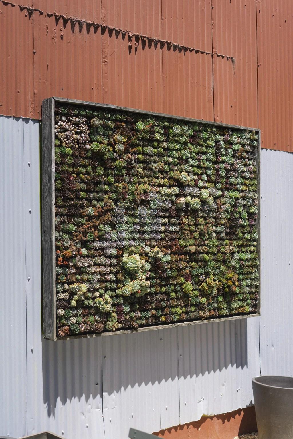 Vertical Succulent Wall Garden
