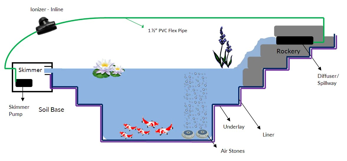 Koi Pond Filtration Design