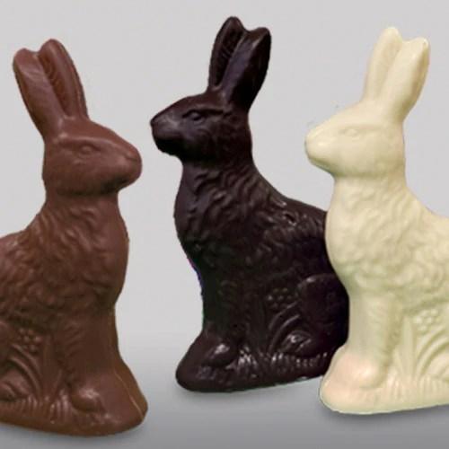 Chocolate Easter Bunnies Adirondack Chocolates