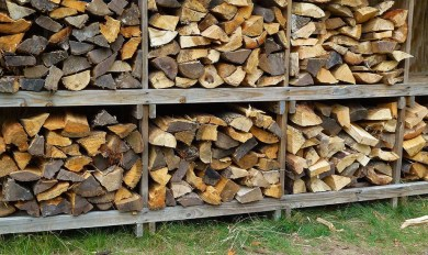 Best Smelling Firewood For Fireplace Use Wood