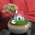 Moss Terrarium Set Micro Landscape Design