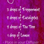 Essential Oil Congestion Diffuser Blend Earthroma