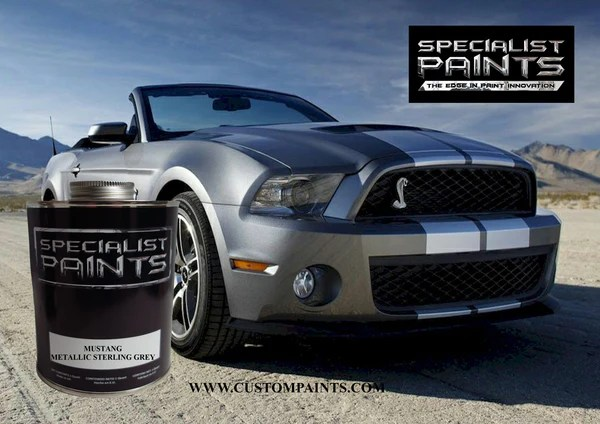 Metal Flake Paint Products