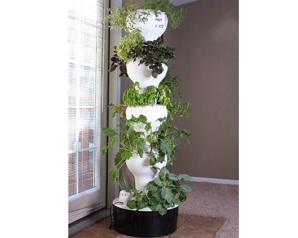 Garden Ideas Hanging