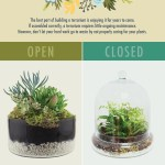 Closed Terrariums Vs Open Terrariums Which Is Best For Your Plants 46 Spruce Wholesale Supply House