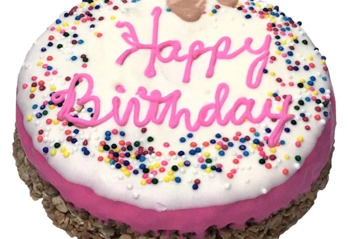 Happy Birthday Cake Pink K9 Granola Factory