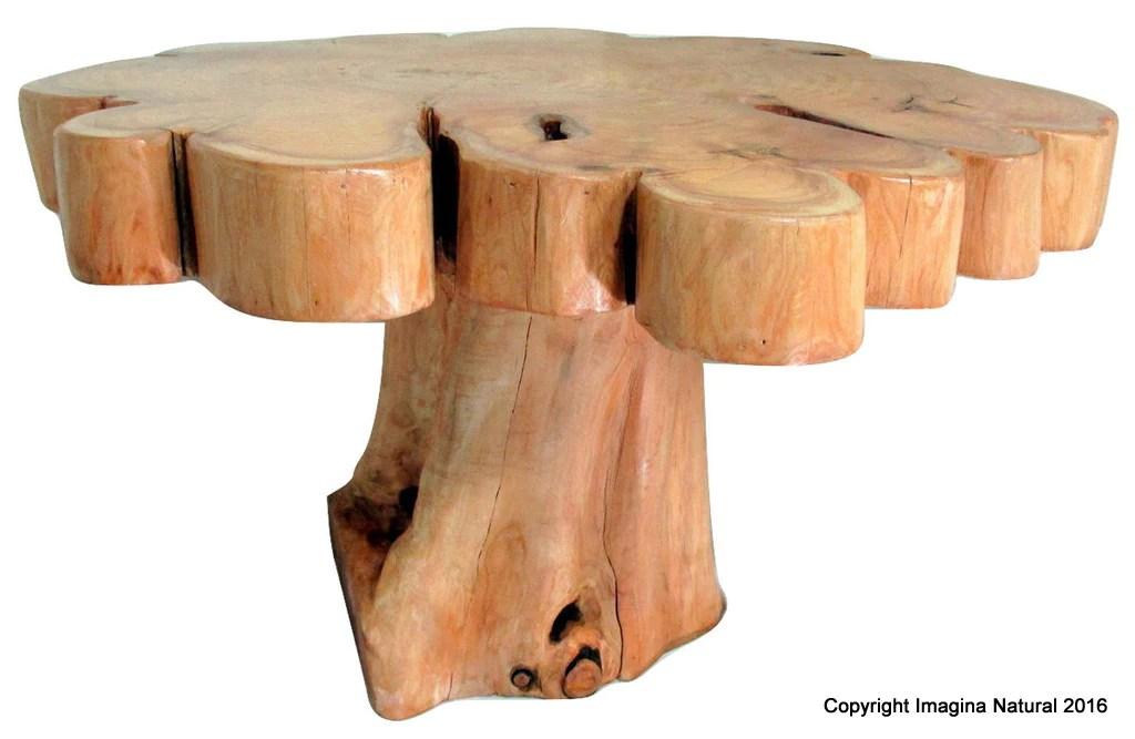 cypress tree trunk handmade coffee table