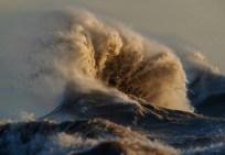 Deniz ve Deniz Yaşamı Fotoğrafları