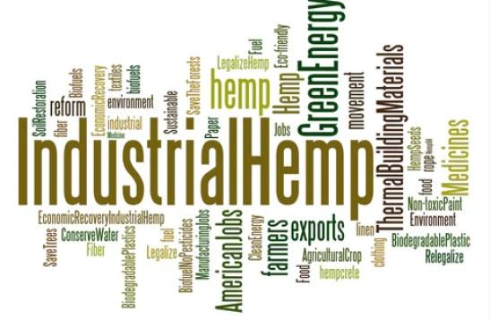 Industrial Hemp Uses - diagram