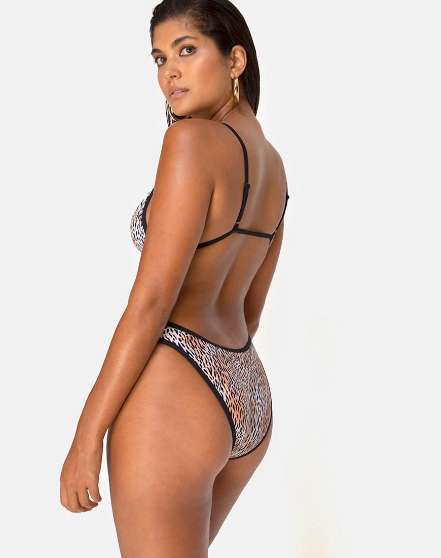 Varna Bikini Top in Mini Tiger with Black Binds by Motel