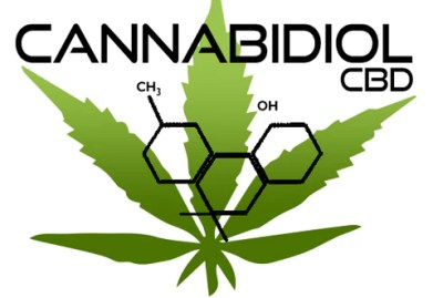 Image result for faq's on cbd