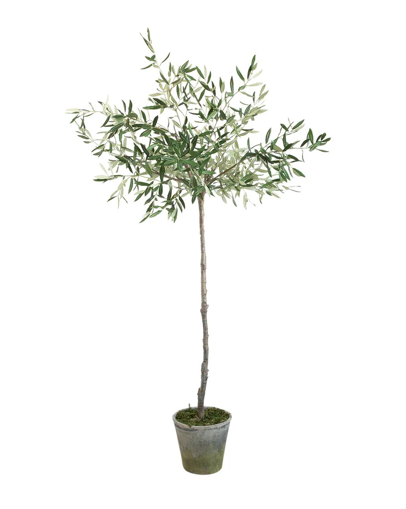Faux Potted Olive Tree McGee Amp Co