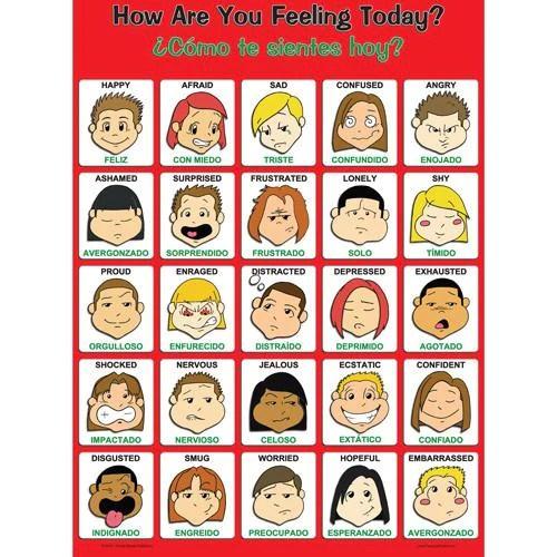 Feelings Wheel Emotions