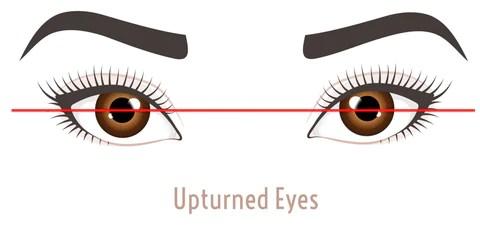 Upturn EyeShape - Mademoiselle Lash - what eye shape do I have