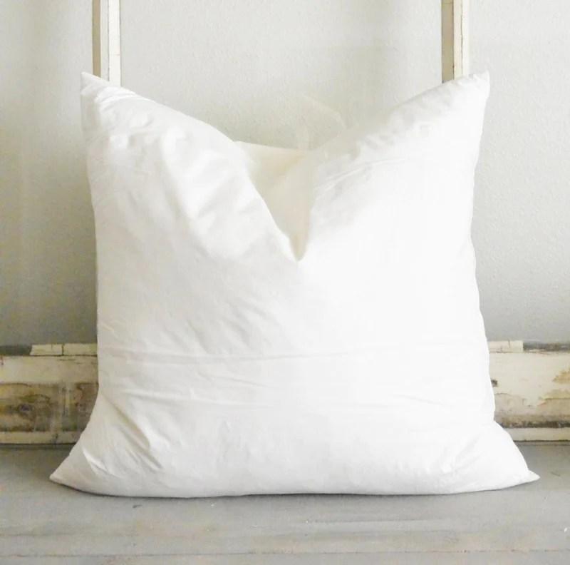 20x20 pillow insert online
