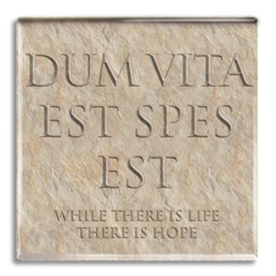 Image result for dum vita est spes est