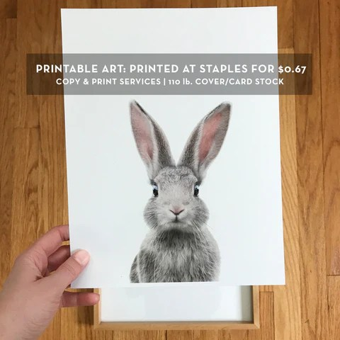 printing at staples kinko s and