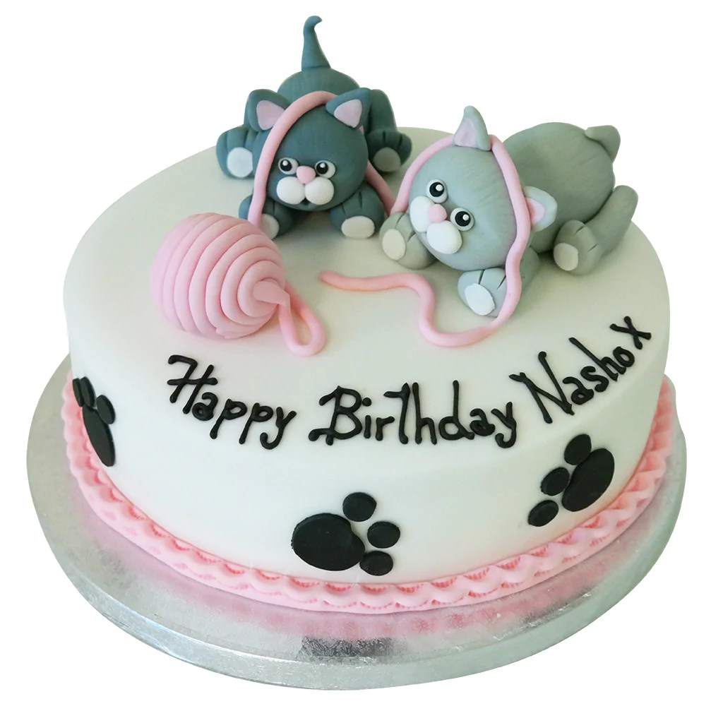 Cat Birthday Cake Buy Online Free Next Day Delivery