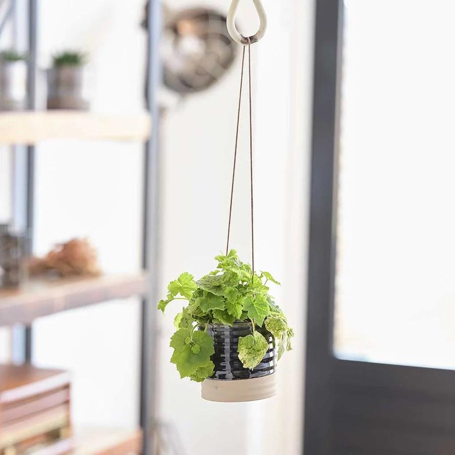 Indoor Hanging Plant Pots - Quality Indoor Plant Pots ... on Hanging Plant Pots Indoor  id=87542