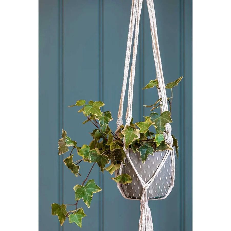 Indoor Hanging Plant Pots - Quality Indoor Plant Pots ... on Hanging Plant Pots Indoor  id=99475
