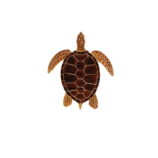 sea turtle brown 10