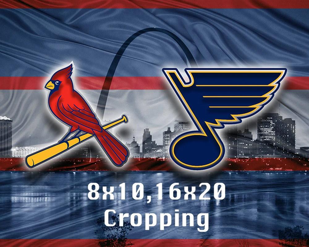 st louis sports teams poster st louis cardinals st louis blues poster