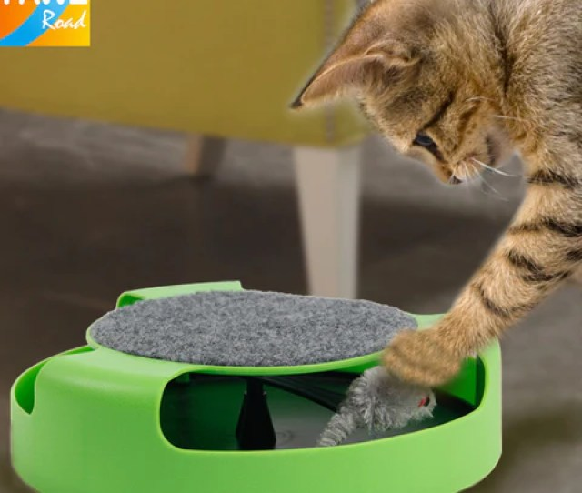 Free Shipping Pet Cat Toy Crazy Training Funny Toy For Cat Cat Toy Cat Mouse Toy