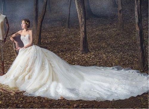 Luxury Wedding Dresses Ball Gown Sweetheart Sweep Train