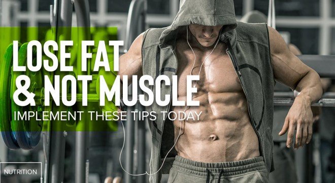 Lose Fat And Not Muscle Implement These Tips Today