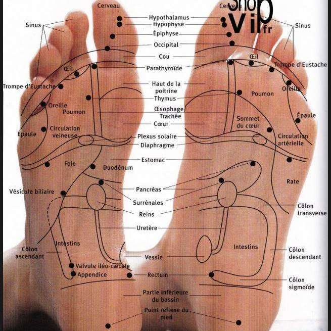 rouleau de massage pied en bois shopvip