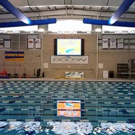 SJAC- South Jersey Aquatic Club