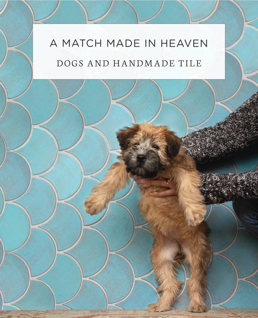 heaven dogs handmade glazed tiles