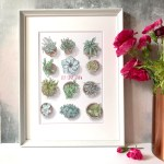 Succulents Let Love Grow Love Grows Where You Plant It Hand Drawn Homemade House Erin Rose Illustration