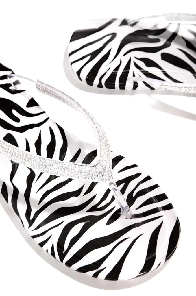 Wild Waters - Zebra