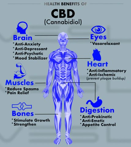 CBD health benefits and uses