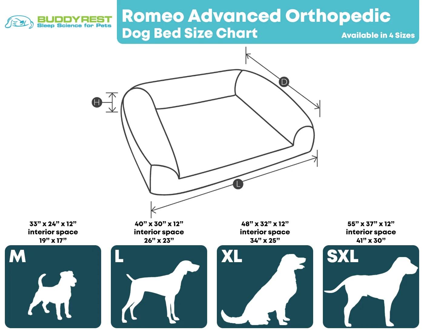 romeo advanced orthopedic bolster dog
