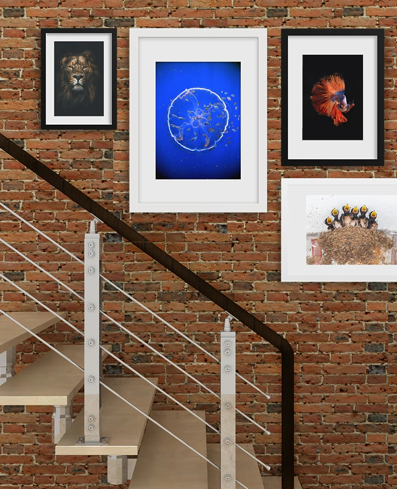 Staircase Wall Art Ideas For Arranging Pictures In Your Stairway | Stairs Side Wall Design | Modern | Stone | Pop | Wallpaper | Stair Pattern
