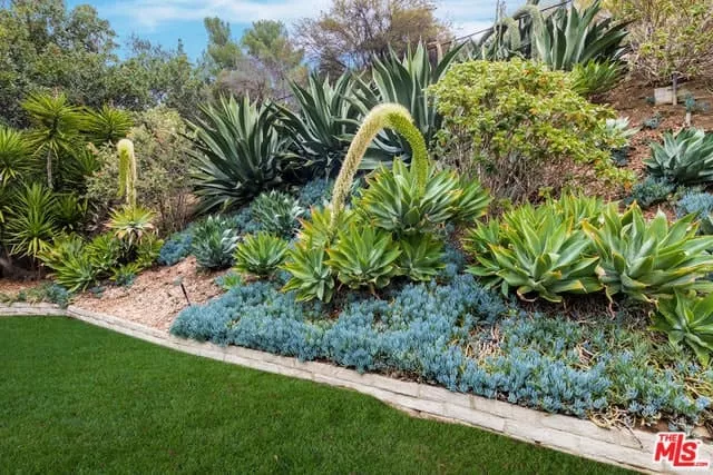 top 7 houston landscaping ideas front